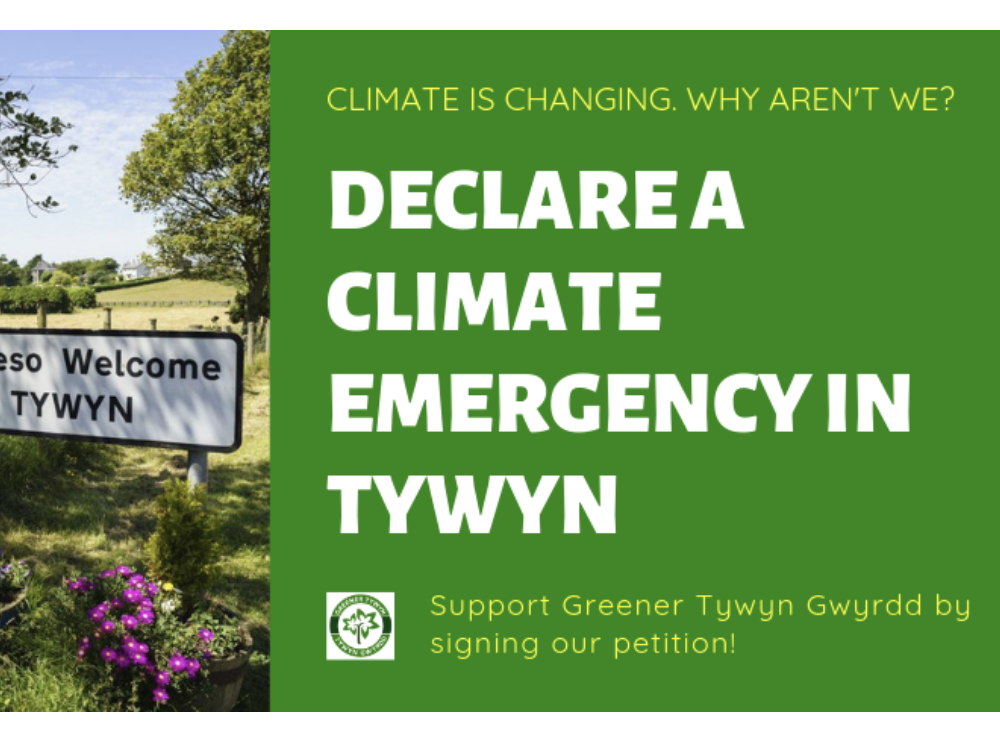 Declare a climate emergency in Tywyn – Sign our petition!